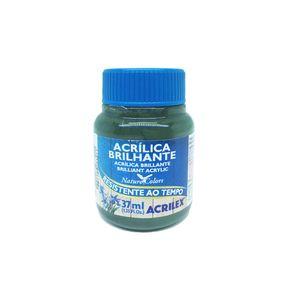 Tinta-Acrilica-37ml-Verde-Oliva---Acrilex