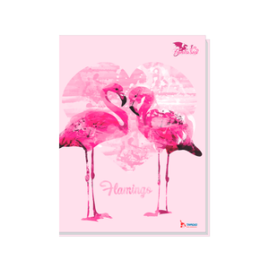 Brochura-14-C.D.-96-Fls-Tamoio---Flamingo-4