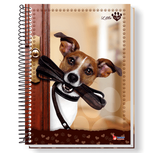 Caderno-Universitario-15x1-300-fls-C.D.-Tamoio---Little-Pet-3