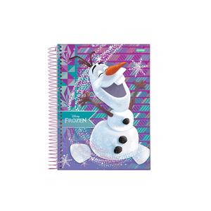 Caderneta-18-C.D.-96-Folhas-Jandaia---Frozen-6