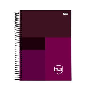 Caderno-Colegial-10x1-160-fls-C.D.-Jandaia---Yale-2