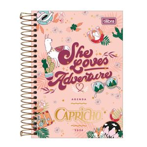 agenda-capricho-2020-capa-4