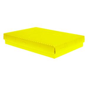 Caixa-Multiuso-Formato-Camisa-Amarela-Nova---Dello