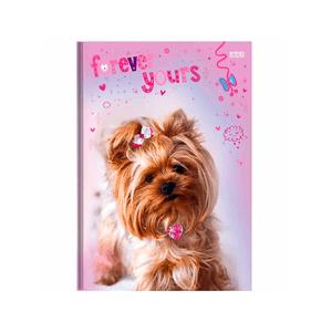 Brochura-14-C.D.-96-Fls-Sao-D.---My-Pets-8